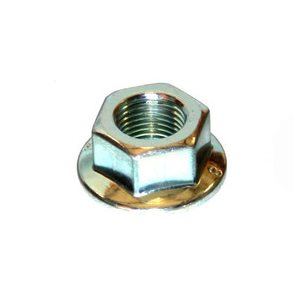 Hex Jam Nut (Flywheel)